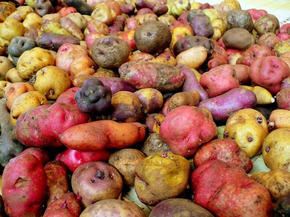 Peruvian potatoes